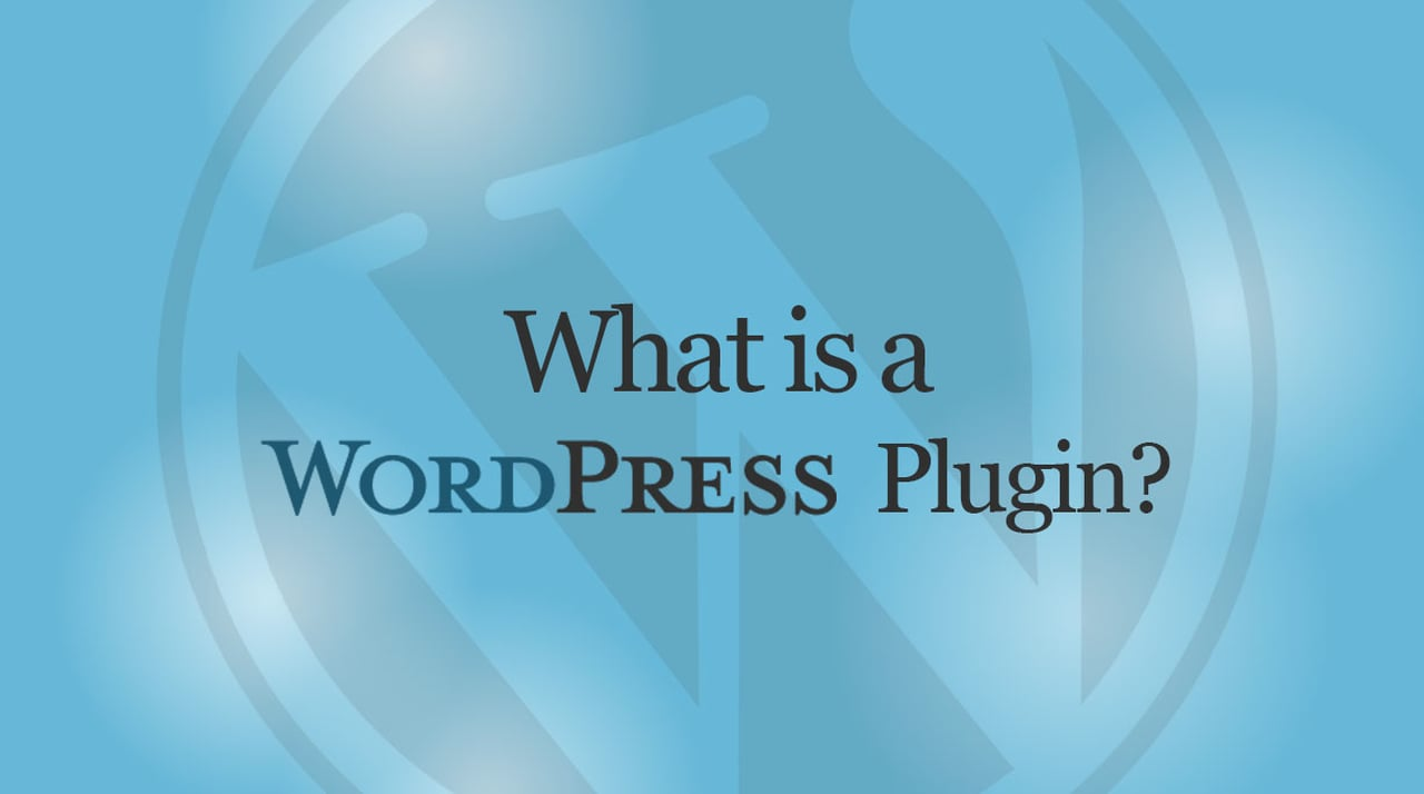 What is a Wordpress Plugin? How to Install it?, staymeonline, Ravi Dixt