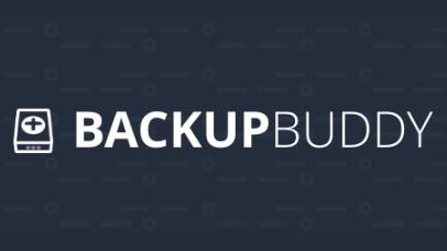 BackUpBuddy Black Friday Deal